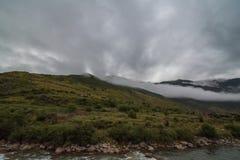 inclinação de montanha na nuvem de encontro com as coníferas sempre-verdes encobertas na névoa em uma opinião cênico da paisagem Foto de Stock Royalty Free