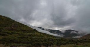 inclinação de montanha na nuvem de encontro com as coníferas sempre-verdes encobertas na névoa em uma opinião cênico da paisagem Imagem de Stock Royalty Free