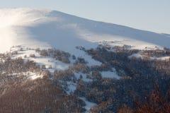 Inclinação de montanha nevado Fotos de Stock Royalty Free