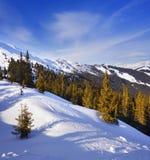 Inclinação do esqui. Fotos de Stock