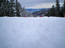 Inclinação do esqui Fotografia de Stock