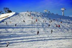 Inclinação do esqui. foto de stock royalty free