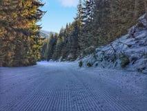 Inclinação do esqui Imagens de Stock Royalty Free