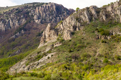 Inclinação do montanhês coberta com as hortaliças com picos de pedra Foto de Stock