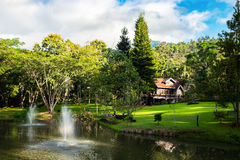 Inclinação do vale verde do recurso da casa no jardim Fotografia de Stock
