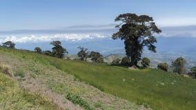 Inclinação do vulcão de Irazu fotografia de stock