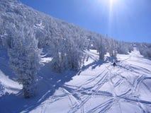Inclinação ensolarada do esqui Imagens de Stock