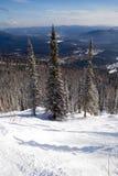 Inclinação para o esqui e a snowboarding do freeride Fotos de Stock Royalty Free