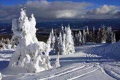 Inclinações do esqui da estrela de prata Fotos de Stock Royalty Free