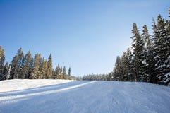 Inclinações do esqui e do snowboard Foto de Stock Royalty Free