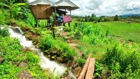 Inclinación de la choza de campo del arroz de Pabongpiang del lapso de tiempo de Hd abajo almacen de video
