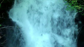 Inclinación para arriba que estrella la cascada en bosque almacen de video