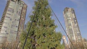 Inclinaison - heure d'or au parc de Yaletown - grand arbre de Noël banque de vidéos