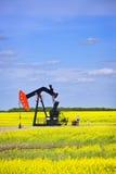Inclinando-se a bomba de petróleo nas pradarias Fotos de Stock
