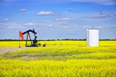 Inclination de tête de la pompe de pétrole dans les prairies Photos stock