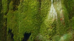 Inclinazione del colpo della cascata unica di Bigar in Romania video d archivio