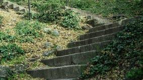 Incline acima do tiro de escadas de pedra feitas ancião no monte da montanha O trajeto estreito corre em inclinações do montanhês vídeos de arquivo