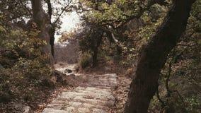 Incline acima do tiro de escadas de pedra feitas ancião no monte da montanha que dirige para baixo O trajeto estreito corre em in vídeos de arquivo