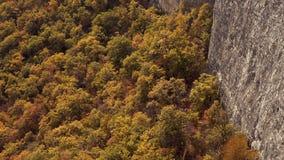 Incline para arriba de bosque amarillo del otoño para revelar las montañas rocosas Montañas crimeas en otoño Barranco con otoño d almacen de metraje de vídeo
