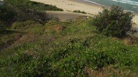 Incline para arriba de la playa de la ciudad en el puerto Macquarie en el verano, Australia almacen de video