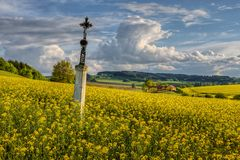 Inclined cross. Old cross sticking out of beet in countryside Stock Image