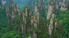 Inclinez vers le haut de la vue de Zhangjiajie Forest Park national, Wulingyuan, Chine banque de vidéos