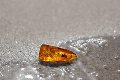Inclusione ambrata baltica dell'insetto dell'acqua della sabbia Fotografia Stock