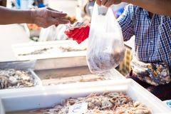 Incluso el comercio del camarón Imagenes de archivo