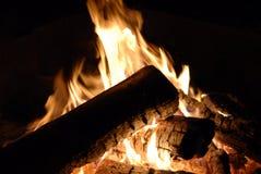 Incêndio do acampamento Imagens de Stock