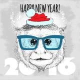 Inconformista del mono del capuchón con los vidrios y el sombrero azules de la Navidad Imagen de archivo
