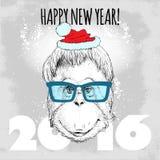 Inconformista del mono del orangután con los vidrios y el sombrero azules de la Navidad Foto de archivo