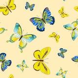 Inconsútil con la mariposa. Imagen de archivo