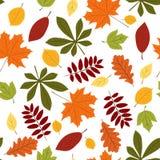 Inconsútil con las hojas de otoño Fotografía de archivo