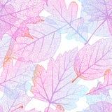 Inconsútil con las hojas de otoño EPS 10 Foto de archivo