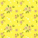Inconsútil floral Fotografía de archivo libre de regalías