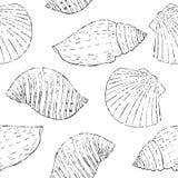 Inconsútil monocromático con las conchas marinas del bosquejo Imagen de archivo libre de regalías