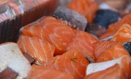 Incontri il pesce di color salmone Fotografia Stock Libera da Diritti
