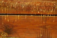 Incorniciatura di legno, fine su Resina gialla sul bordo di legno fotografie stock libere da diritti