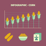 Increase corn price Stock Photo
