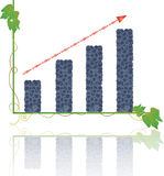 Increase a crop of grapes graph. Beautiful violet wine grapes, showing success in business, harvest rapid increase Royalty Free Stock Photos