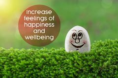 Increase feelings of happiness and wellbeing. The text Increase feelings of happiness and wellbeing with stone smile happy face on green moss and sunshine light stock images