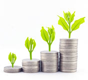 Increase Your Savings Stock Photos