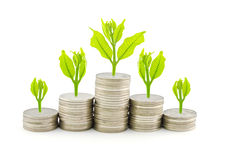 Increase your savings. With isolated background Royalty Free Stock Photo