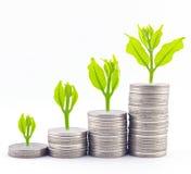 Increase your savings. For success concept stock photos