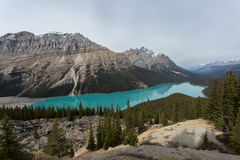 Incredible Aqua Lake Nestled by Mountains. Incredible aqua lake surrounded by green pine tree forest under beautiful rocky mountains Stock Images