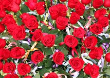 Incredible bunch of lots of red roses in tribute to women and to Stock Images