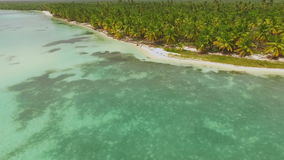 Incredible clear water on the shore of the ocean and the green forest view from the drone stock footage