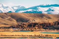 Incredible landscape of the steppe area with lakes and trees smoothly turning into mountains with snow-capped peaks. Mountains Of Altai Royalty Free Stock Photography