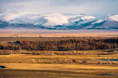 Incredible landscape of the steppe area with lakes and trees smoothly turning into mountains with snow-capped peaks. Mountains Of Altai Stock Images