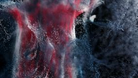 Incredible macro view of a CG paint powder explosion. Slow motion. Seamless loop stock video